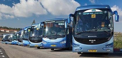 צי אוטובוסים.jpg