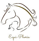 Equiphoria lovasterápia budán, horse therapy psychology in buda