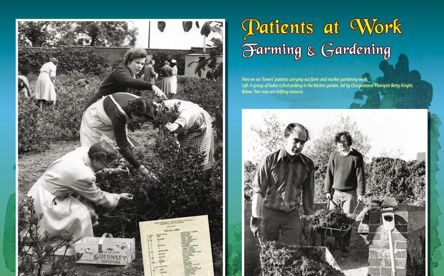 24-Towers_Board 17 - Patients Farming-Ga