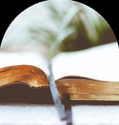 bibleimage.png