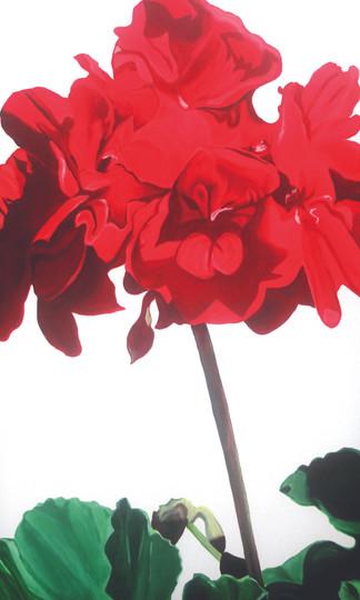 geranium-flower-photo-realistic-painting