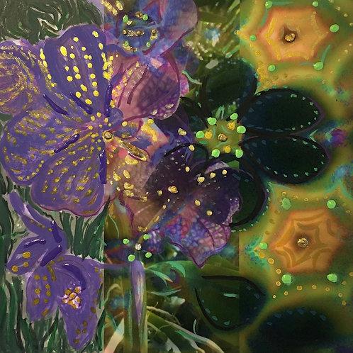 Meditation Orchid