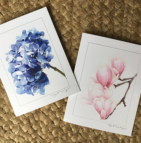 Floral Study Notecards