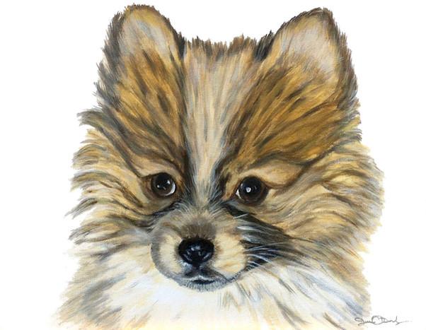 pet-dog-portrait-painting-photo-realistic-tiffany