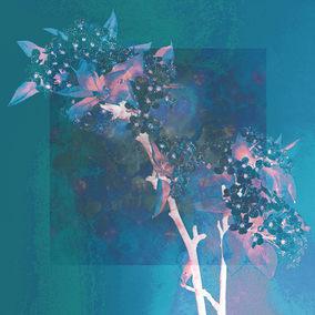 Cherry Blosom Blue