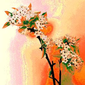 Cherry Blosom Orange/Pink/Green