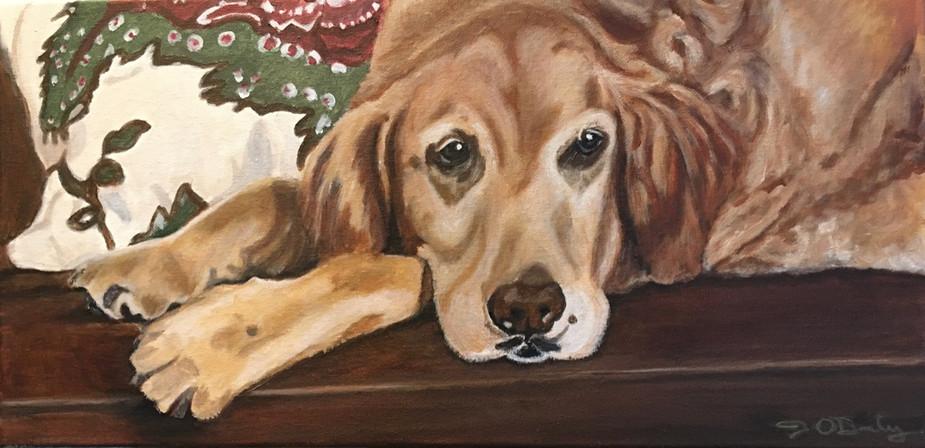 pet-dog-portrait-painting-photo-realisti