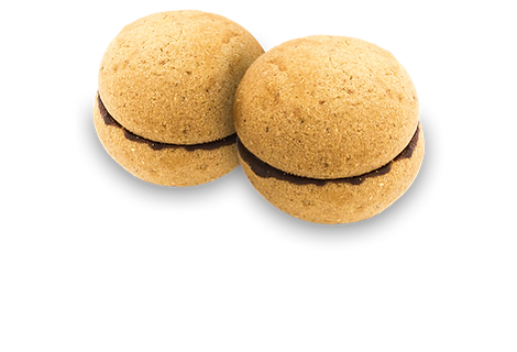 baci-dama-biscotti-artigianali-con-logo