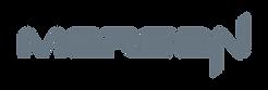 Mersen-Italia-esperto-mondiale-settori-elettronica-di-potenza-materiali-avanzati-per-elettronica