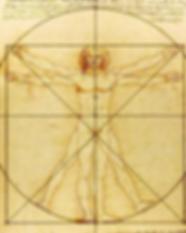 Da Vinci man.png