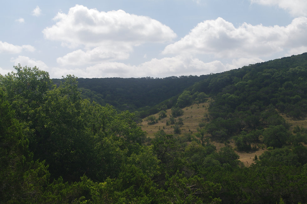 A view of a valley in the Texas Hill Country from the top of our Fossil Ridge Hill.
