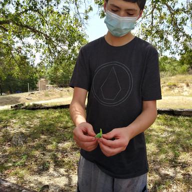 Digging for Dinosaurs Summer 2020
