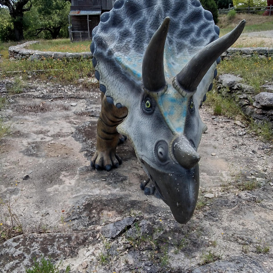 Summer Camp: Digging up Dinosaurs