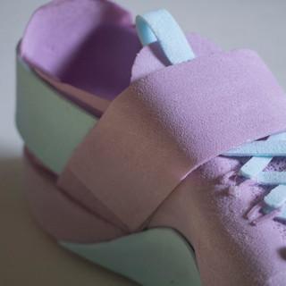 Shoe Foam Model
