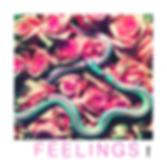 FEELINGSx.png