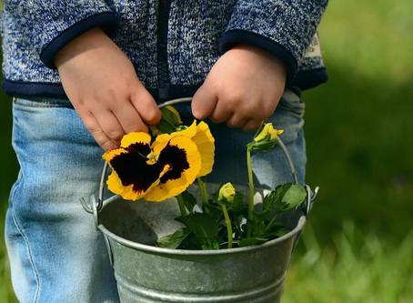 How Gardening Helps Children Grow