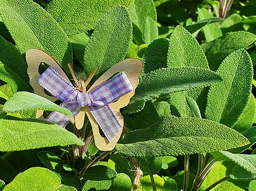Decorative Butterfly's