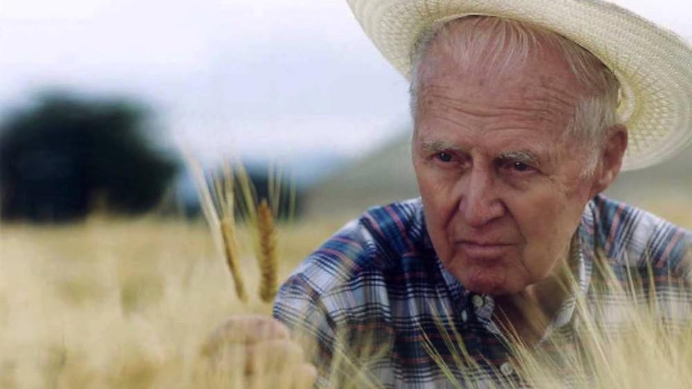 Norman Borlaug - Auster Tecnologia