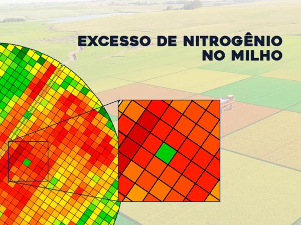 Cuidado! Nitrogênio em excesso pode reduzir sua produtividade