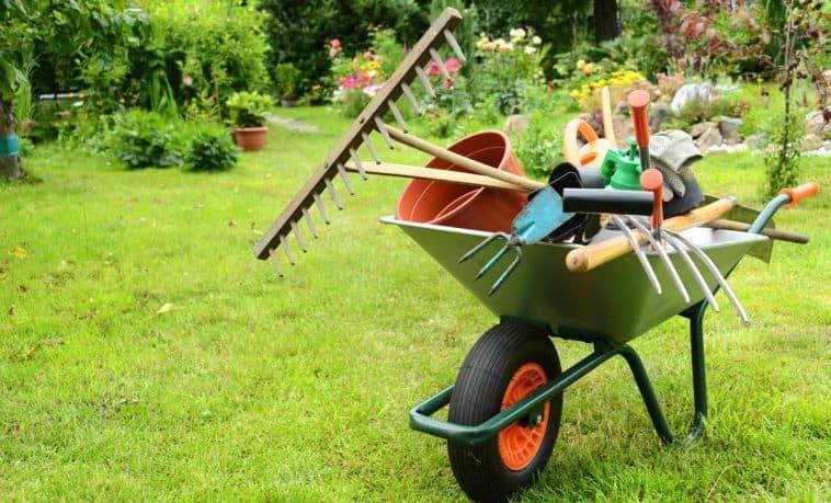 Jardinagem, a partir de R$350 à diária