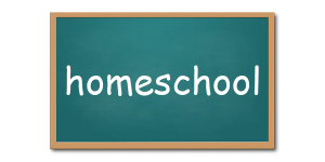 Homeschool resources from the VT Dept of Libraries