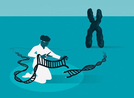 Генетические ножницы: как переписать код жизни