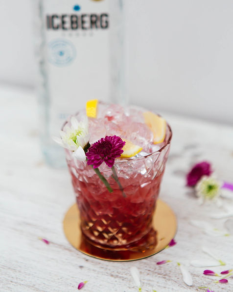 Frozen Pomegranate Lemonade Spritz