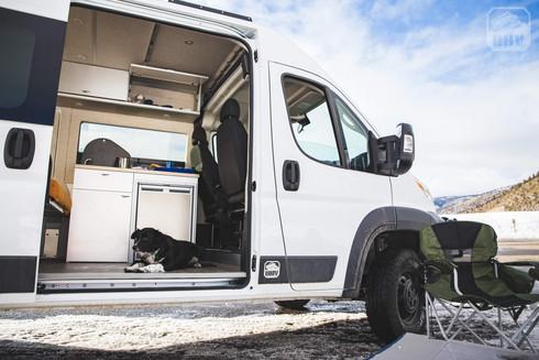 Promaster Van Camper Dog