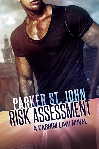 Risk Assesment: A Cabrini Law Novel