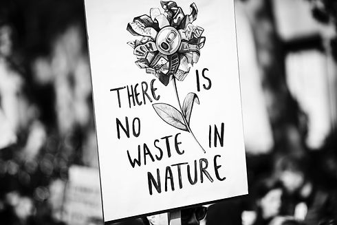 THERE%20IS%20NO%20WASTE%20IN%20NATURE_edited.jpg