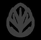 01-logo_edited.png