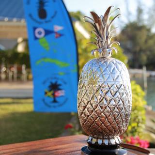 Pineapple Cup 2.jpg