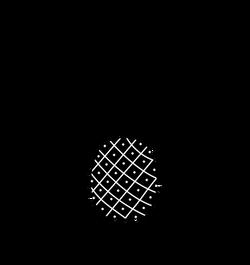 pineapplecup