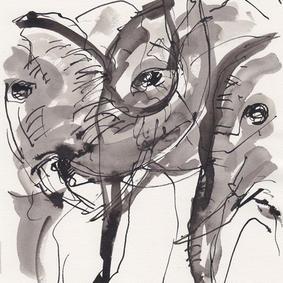 Elefanter (kr. 500,-)