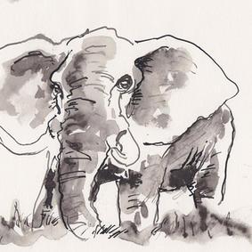 Sur Elefant (kr. 500,-)