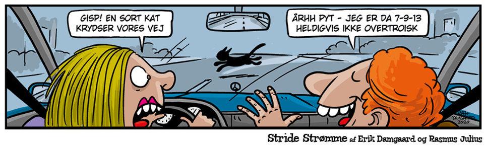 Stride_strømme225web.jpg