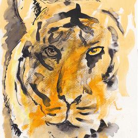 Tiger (SOLGT!)
