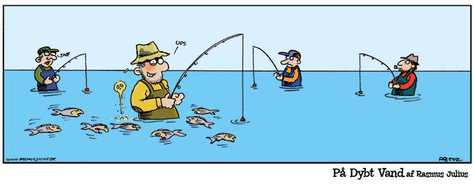 fish1328.jpg