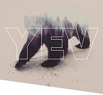YEV poster