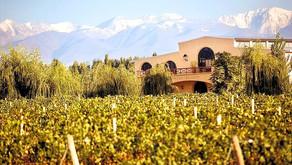 Ruta del Vino: Conozca los principales destinos de Argentina