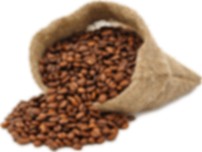 PikPng.com_beans-png_397593.png