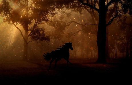 FOREST HORSE.jpg