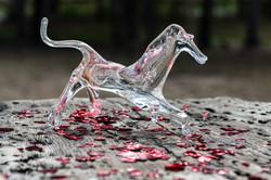 leanne_horse