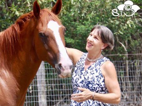 voted #1 celebrant on the Fraser Coast, Queensland