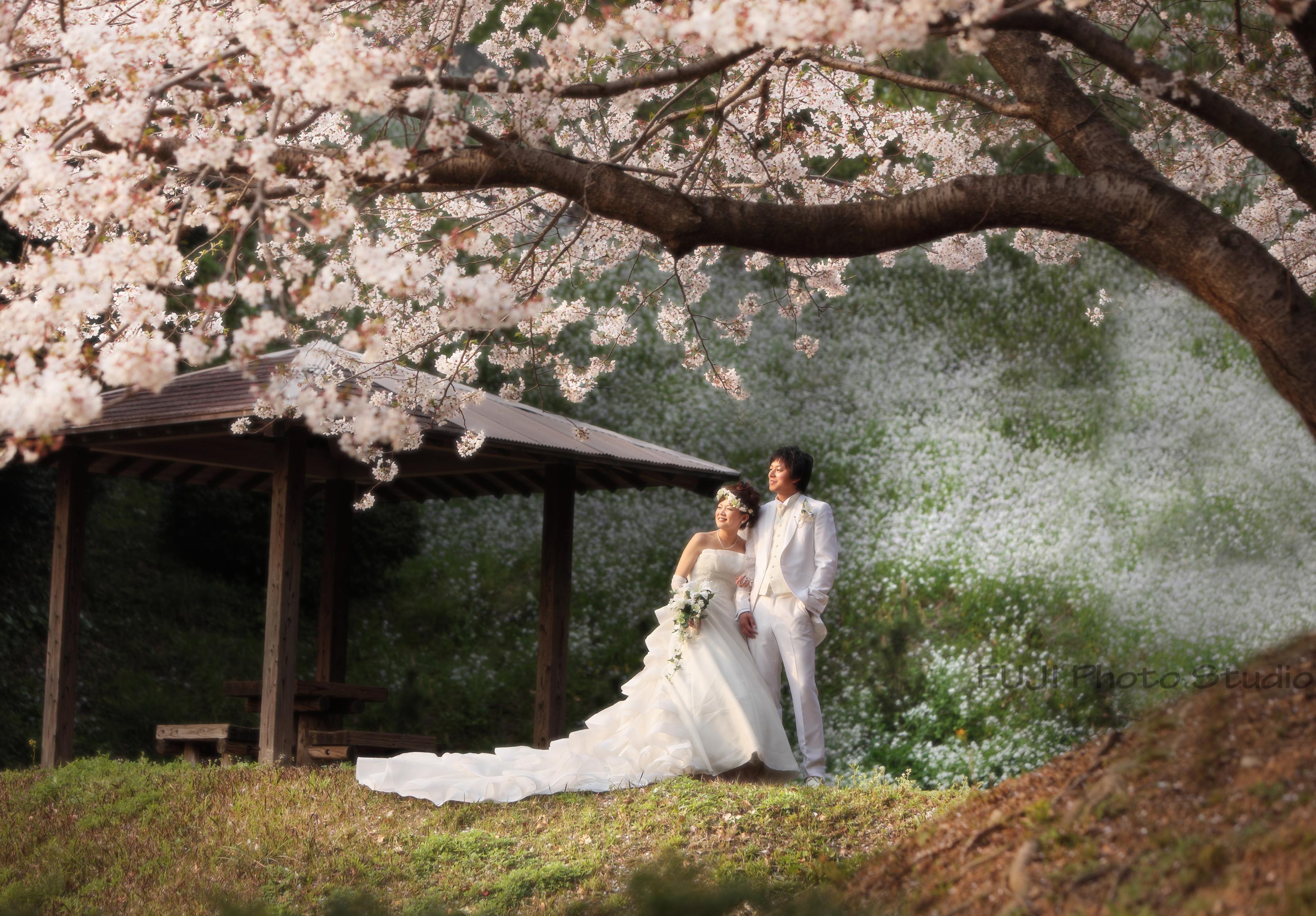 婚礼wak3.png