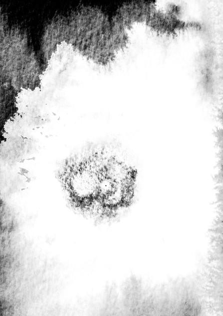 Supernova 23