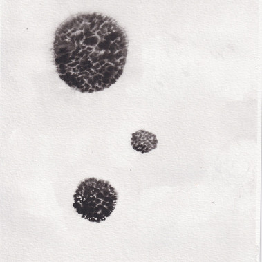 Protocell IV