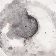Supernova XVII