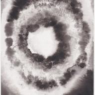 Supernova XIV