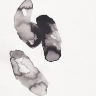 Archaea I